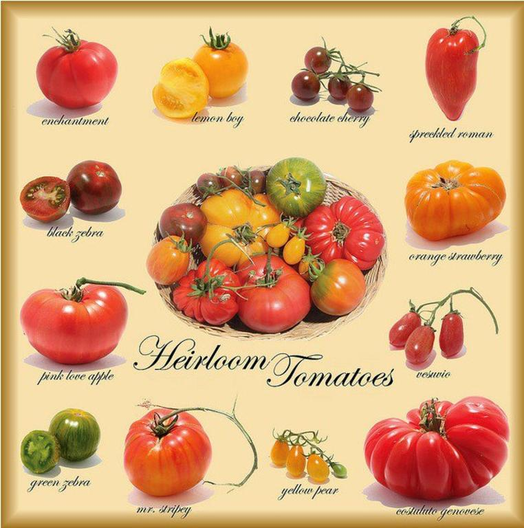 Uslg_heirloom_tomatoes