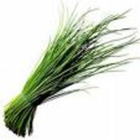 Chives_in_a_bundle